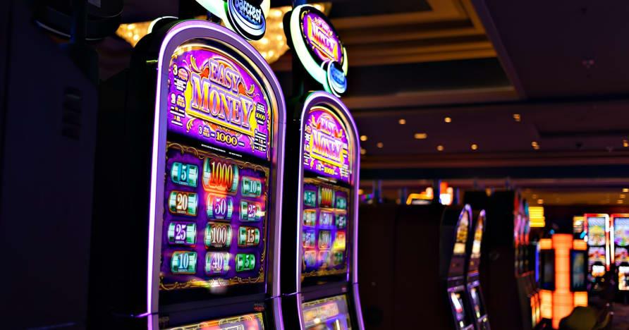 Mida peate teadma Play'n Go raha keerutamise kohta uute mänguautomaatide jaoks - küüliku augurikkus
